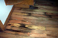 Flood service flood damage service flood cleaning for How to dry wet wood floor
